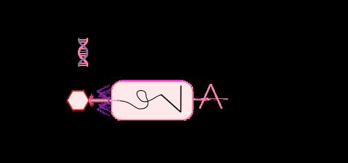 CRISPR VALLEY